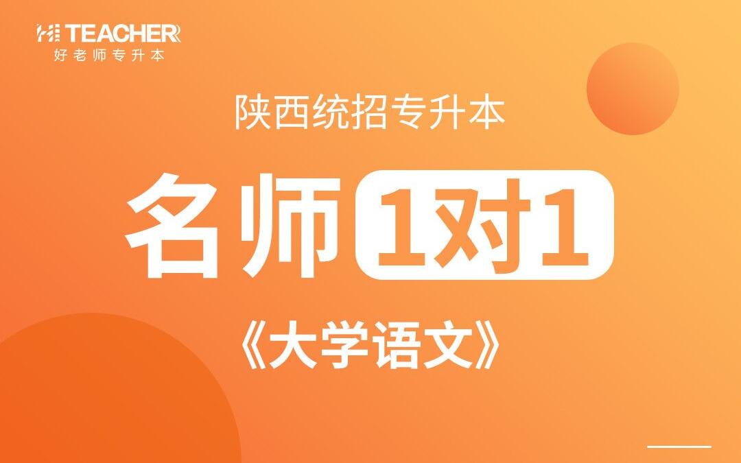 杨潇老师-大学语文-陕西好老师教育