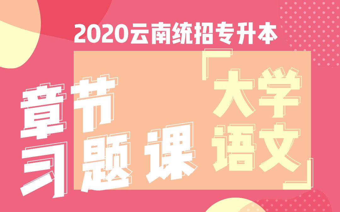 2020云南统招专升本章节习题课《大学语文》
