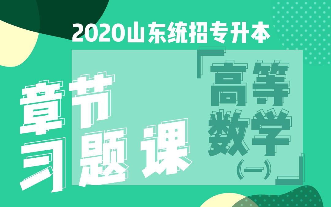 2020山东统招专升本章节习题课《高等数学》(一)