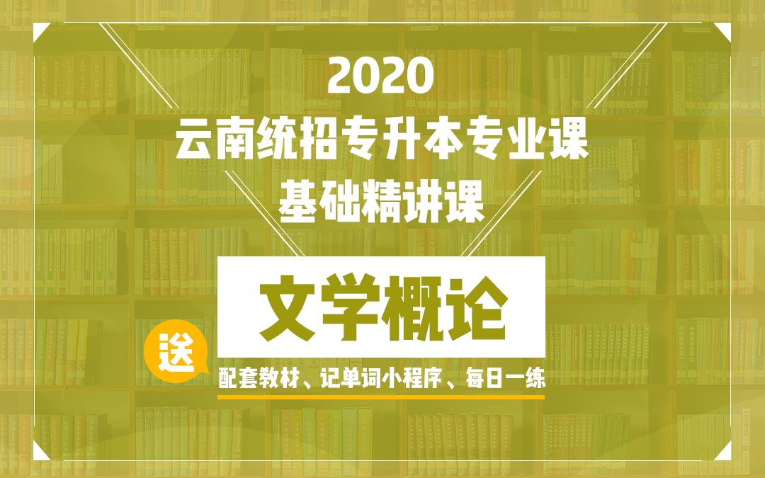 2020云南统招专升本基础精讲课《文学概论》
