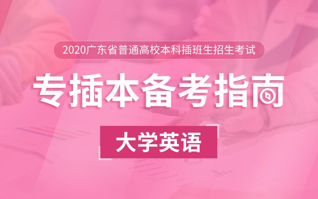 2020广东统招专插本备考指南《大学英语》