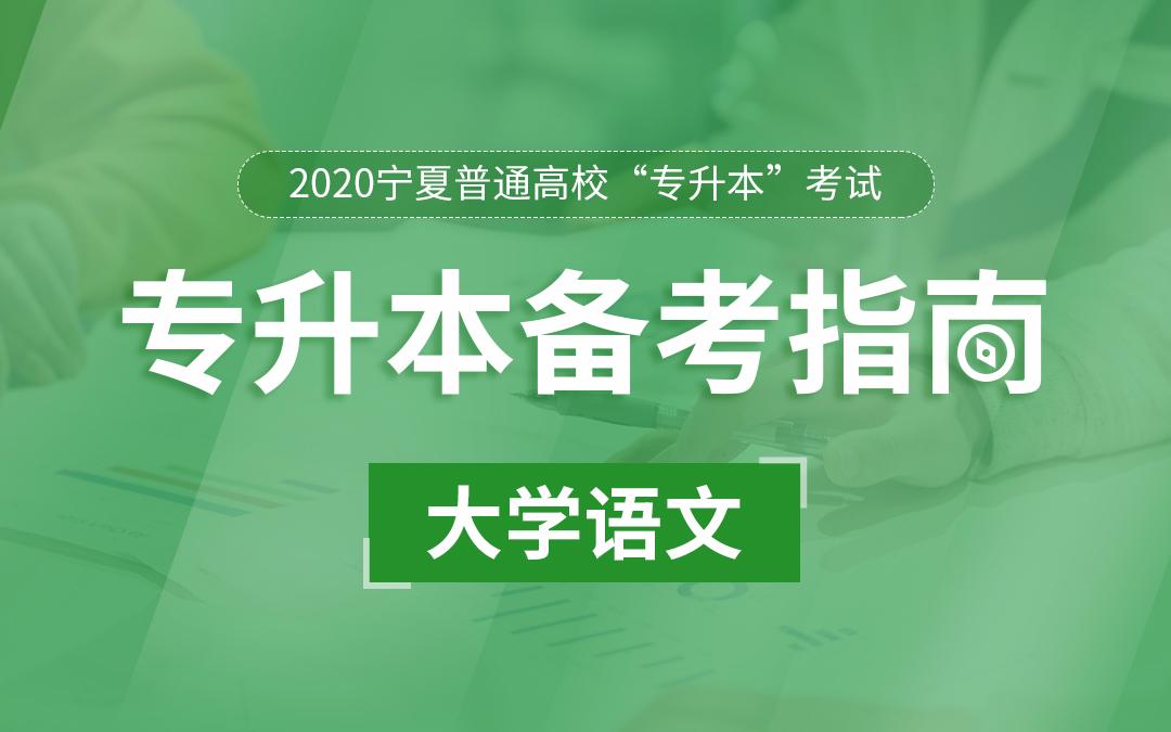 2020宁夏统招专升本备考指南《大学语文》